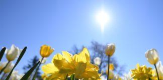 Прогноз погоди для України: коли повернеться сонячна погода і припиняться дощі - today.ua