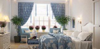 Кімнатні рослини для спальні: які квіти безпечні під час сну - today.ua