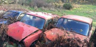 """В Англии нашли кладбище автомобилей Lada"""" - today.ua"""