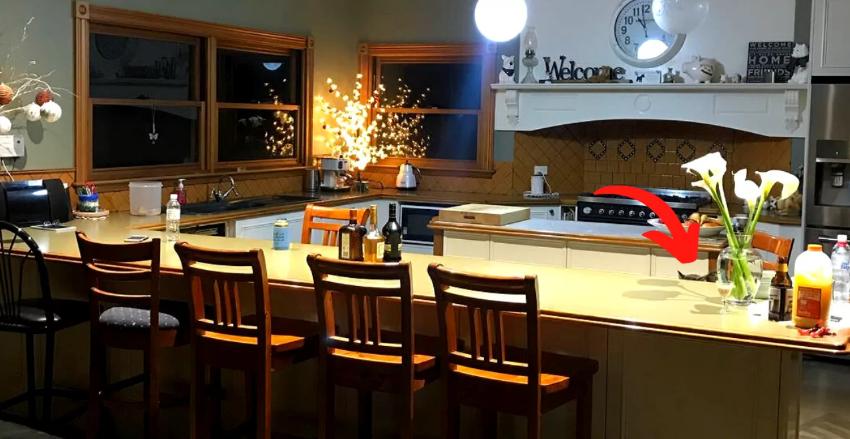 Тест на уважність: на кухні сховався кіт, але ніхто не може його знайти