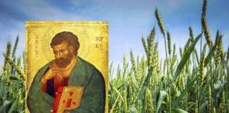 8 травня: який сьогодні день календаря, і чому він так важливий для усього року - today.ua