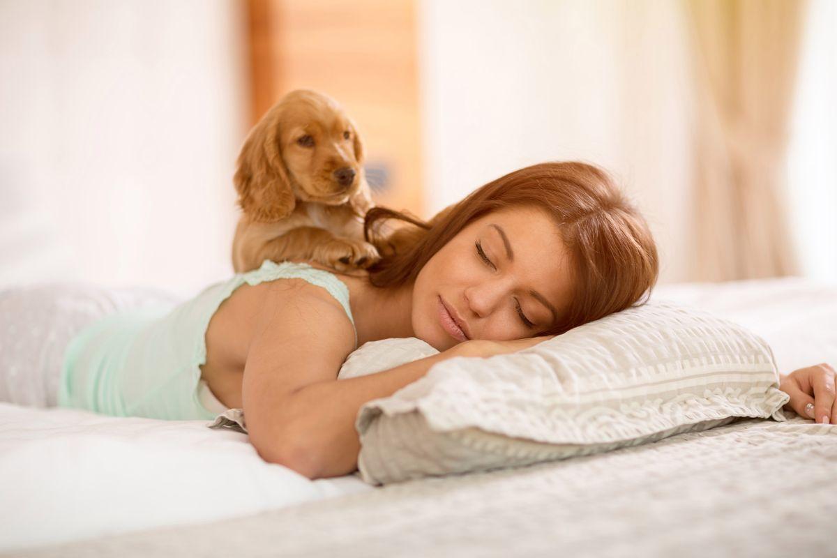 Почему собака должна спать с вами в одной постели: ТОП-5 причин  - today.ua