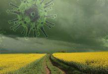 Стало известно, что убивает коронавирус на всех поверхностях за 15 минут - today.ua