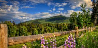 Свято 25 травня: що не можна робити в Епіфанів день, щоб не накликати біду - today.ua