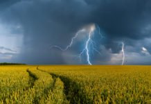 Погода в Україні до кінця червня буде небезпечною: синоптики обіцяють сильні грози і температурні перепади - today.ua