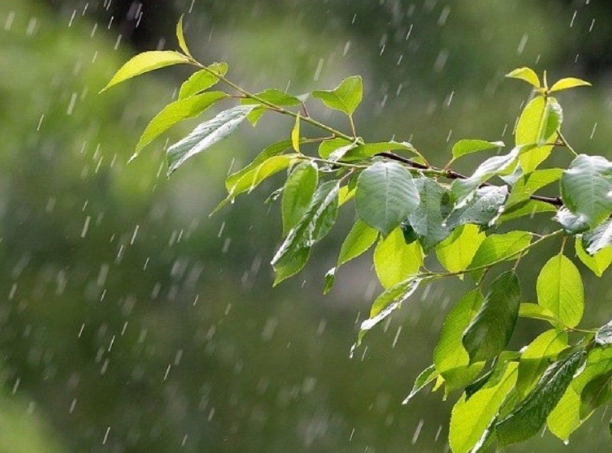 Як довго в Україні триватиме дощова погода: прогнози синоптиків до кінця тижня - today.ua