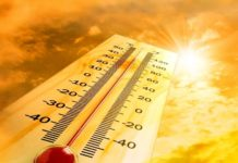 В Україні різко потеплішає: прогноз погоди від синоптика Наталки Діденко - today.ua