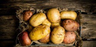 В Україні продають «технічну» картоплю: чим небезпечні такі овочі для здоров'я - today.ua