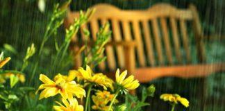 """Спека спаде і почнуться дощі: синоптик розповіла про погоду на найближчий тиждень """" - today.ua"""