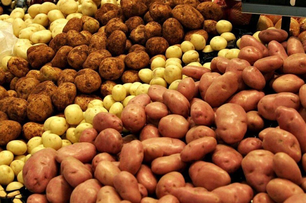 Цены на картофель в Украине продолжают расти: какие сорта выбрать на зиму