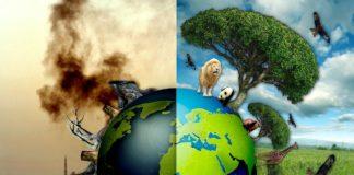 """Що відбувається з природою в Україні після карантину: страшне зізнання еколога"""" - today.ua"""