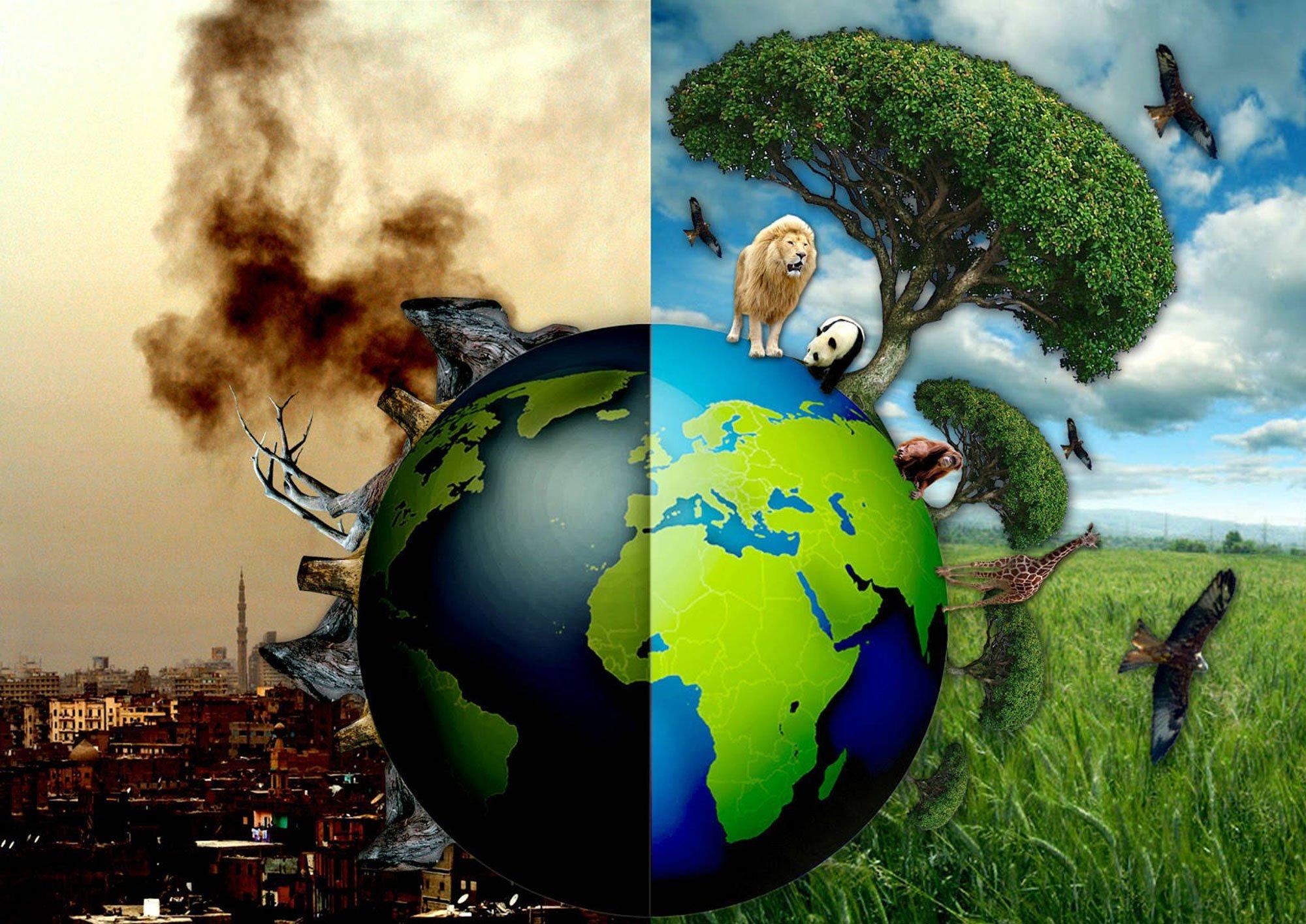 Картинки до и после экология