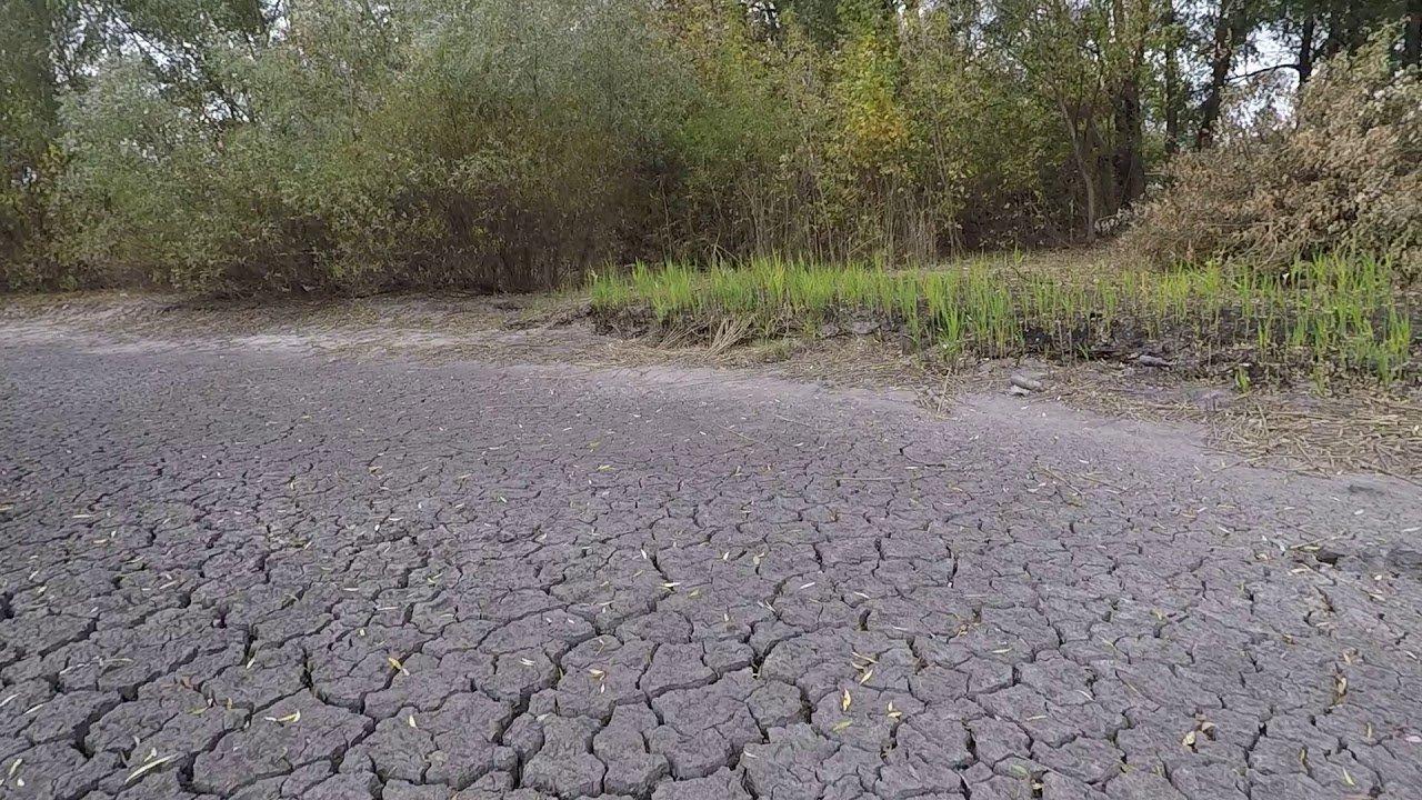 Вчені розповіли, що чекає Україну у найближчі роки: аномальна спека і торнадо – не найстрашніше