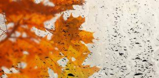 """Прогноз погоды на осень и зиму 2020 в Украине от Укргидрометцентра"""" - today.ua"""