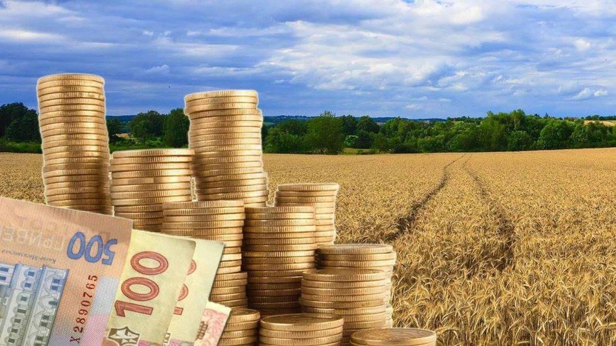 Налог на земельный пай приведет к колоссальным убыткам – выводы экономиста - today.ua