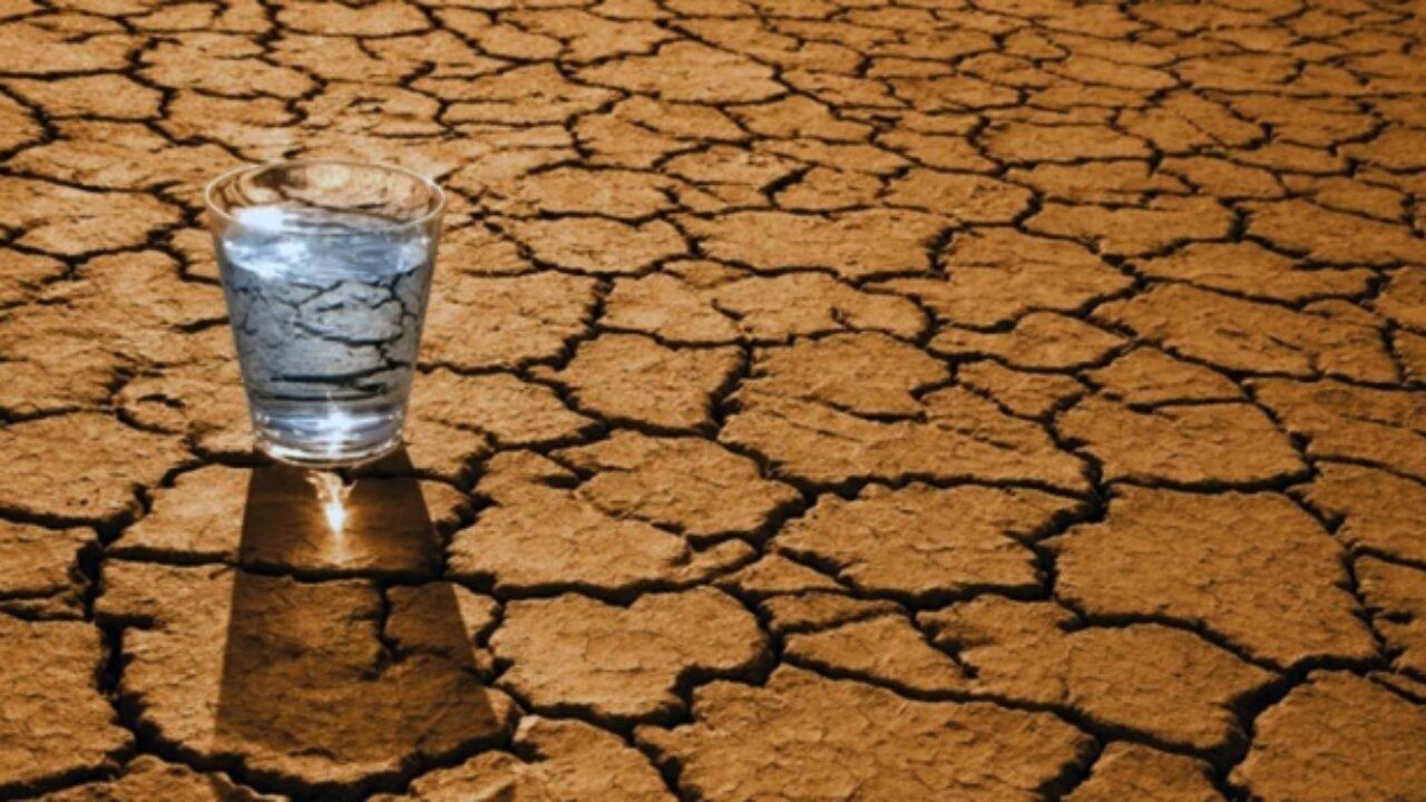 Що станеться з організмом, якщо випити морської води