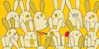 """Тест на уважність: знайдіть самотнього кролика на картинці за 20 секунд"""" - today.ua"""