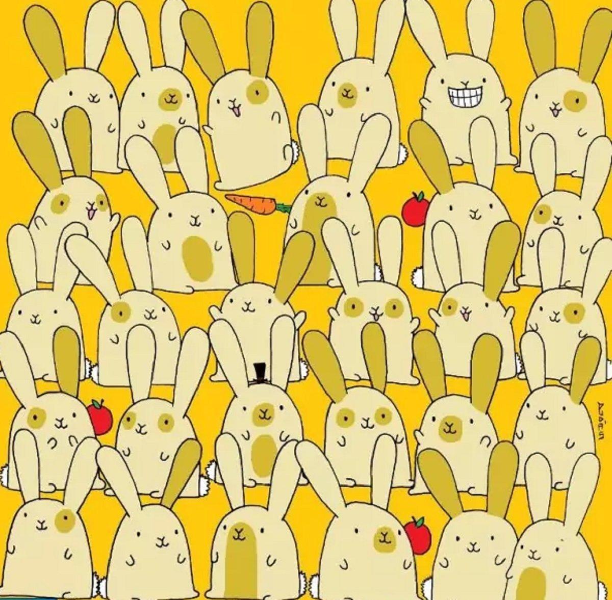 Тест на уважність: знайдіть самотнього кролика на картинці за 20 секунд - today.ua