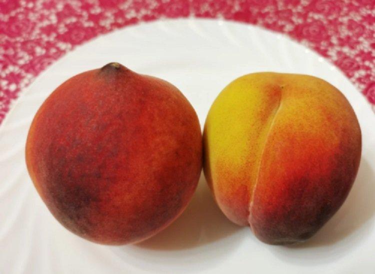 Як вибрати найсмачніші персики: фрукти ділять на «хлопчиків» і «дівчаток» за зовнішніми ознаками
