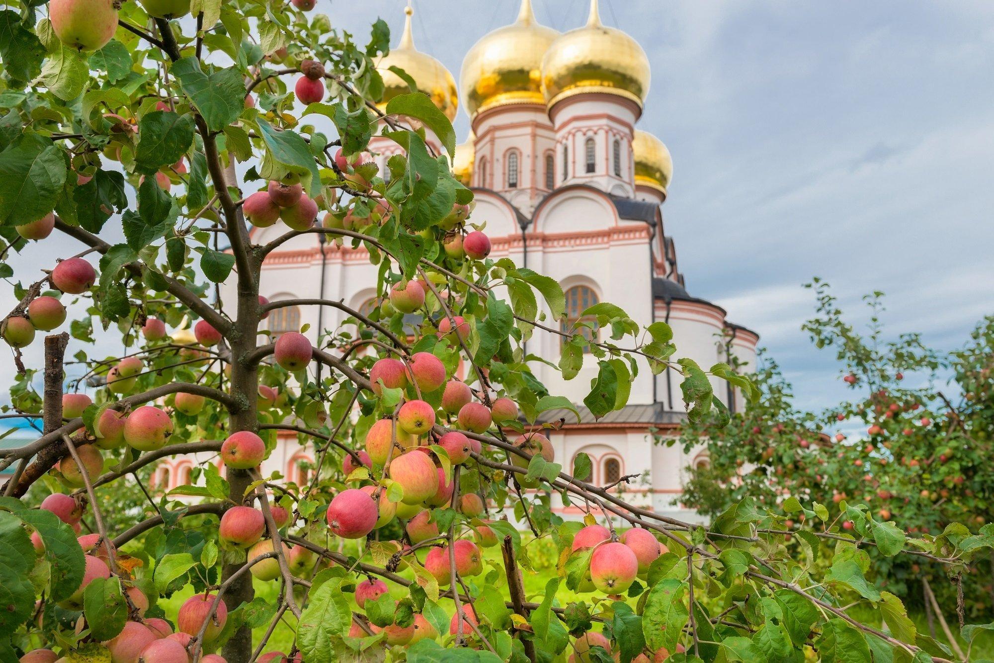 Праздник 4 июля: в день Иулиана можно смыть водой все болезни и горести - today.ua