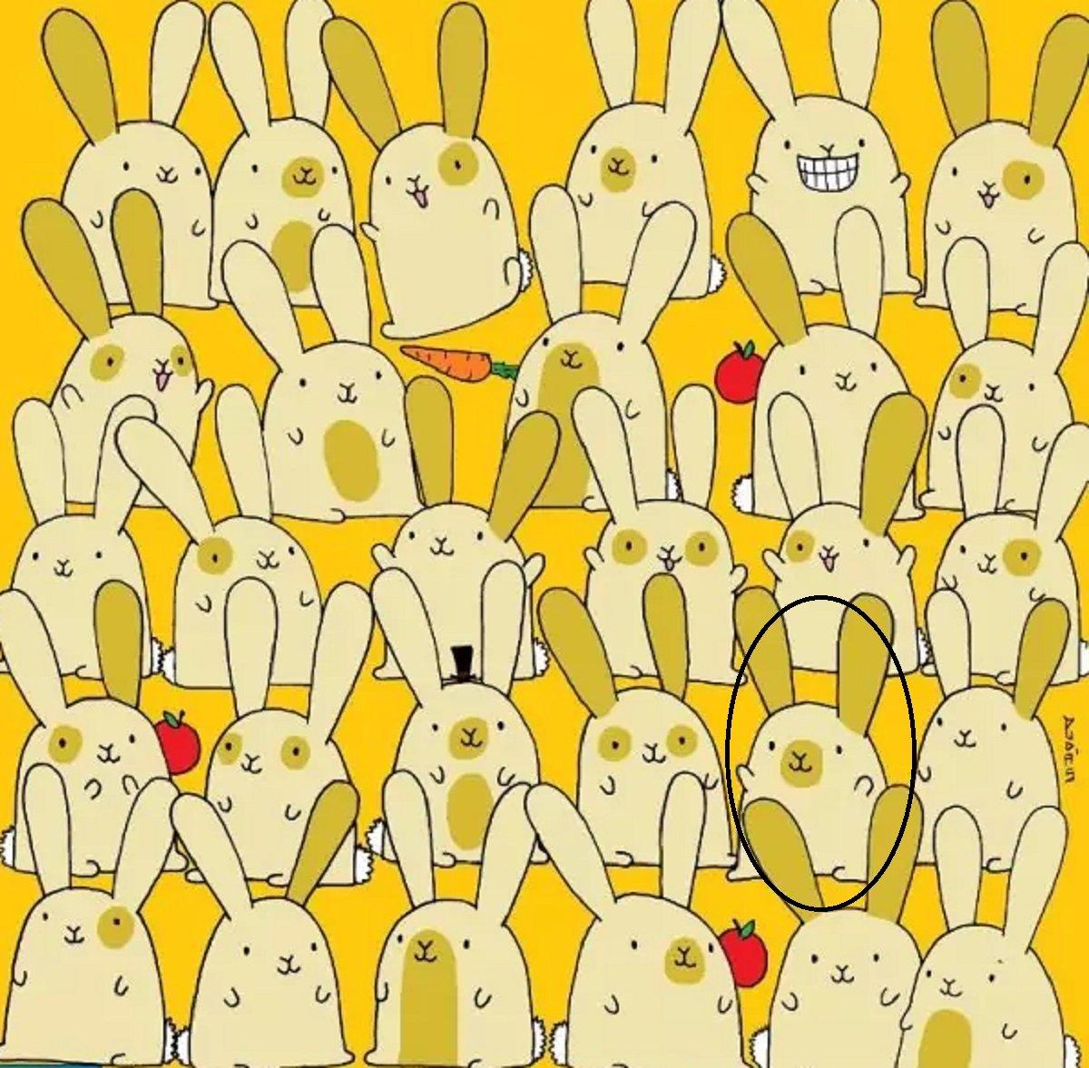 Тест на уважність: знайдіть самотнього кролика на картинці за 20 секунд