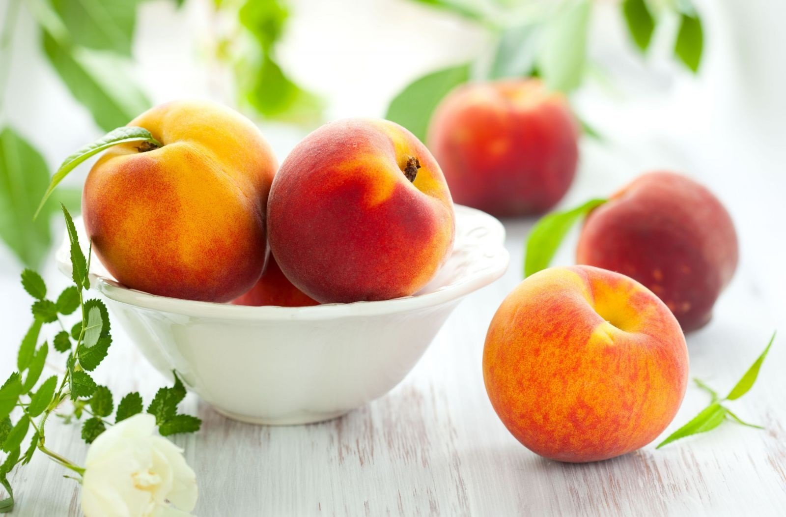 Как выбрать самые вкусные персики: фрукты делят на «мальчиков» и «девочек» по внешним признакам - today.ua