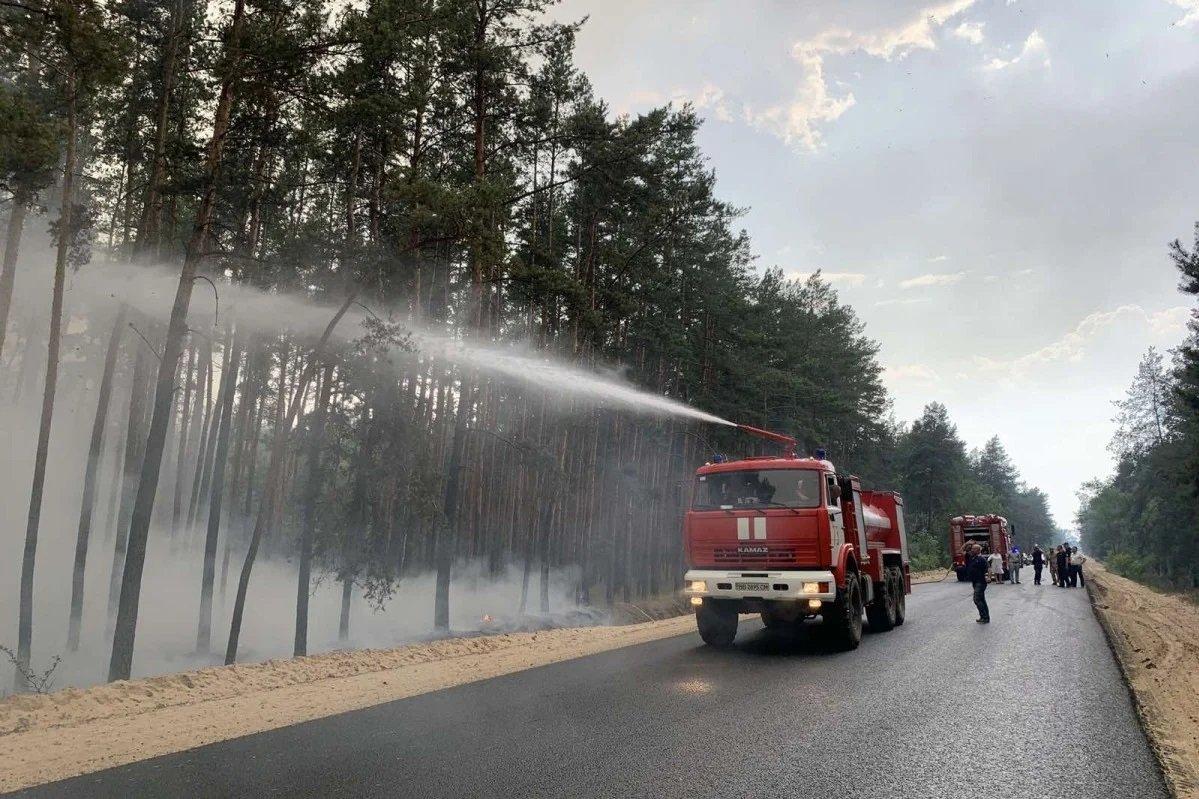 Лесные пожары в Луганской области: огонь перекинулся на села, есть погибшие и пострадавшие