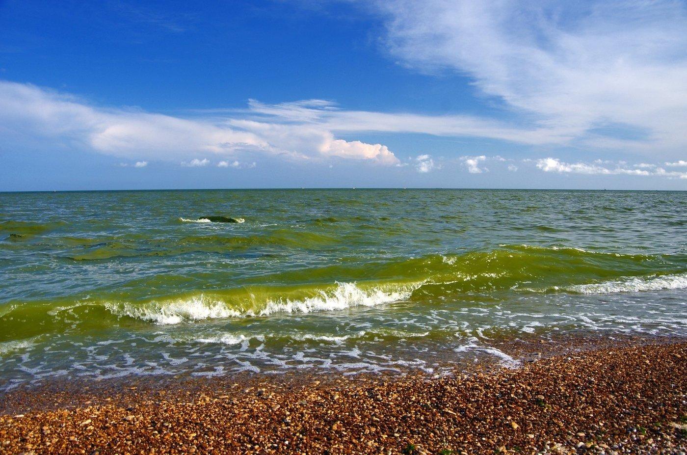 Чорне море загине вже через 20 років: екологи б'ють на сполох