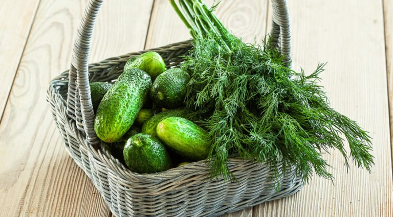 Як замаринувати смачні огірки за 5 хвилин: виходять хрусткі і соковиті