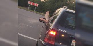 """Зачем водители высовывают ногу из окна?"""" - today.ua"""