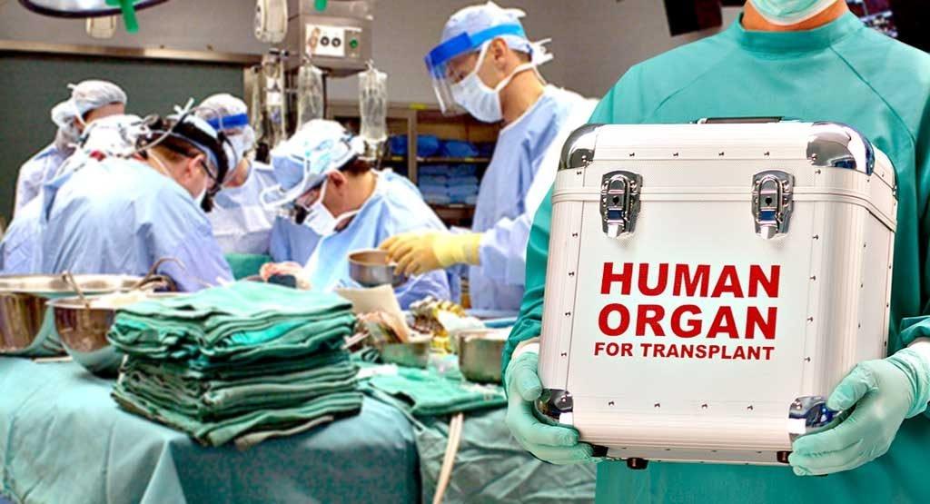 Уряд затвердив тарифи на трансплантацію органів: суми вражають - today.ua