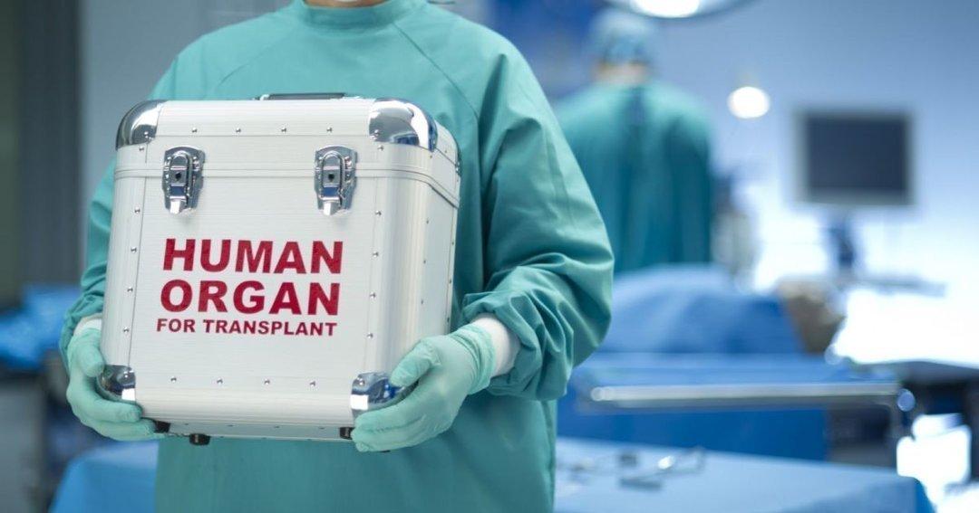 Вилучатимуть очі, серця і нирки: за два роки в Україні почне працювати програма трансплантації органів - today.ua