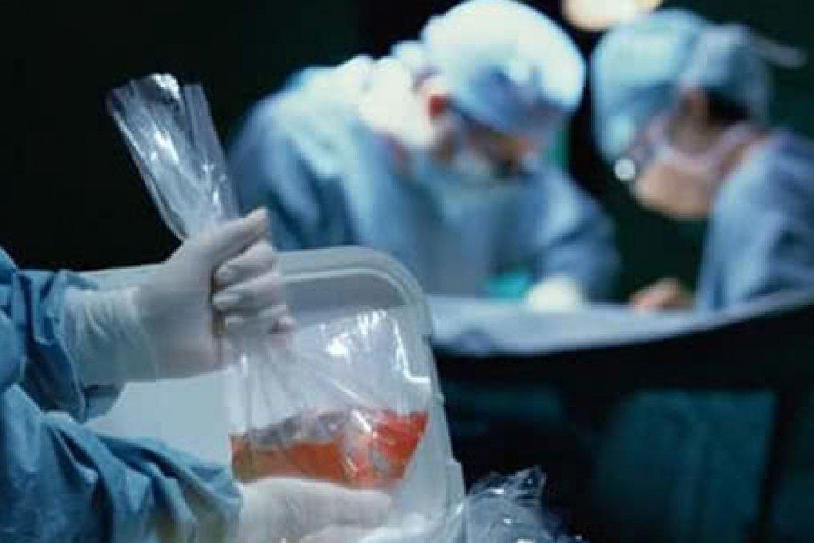 Вилучатимуть очі, серця і нирки: за два роки в Україні почне працювати програма трансплантації органів