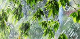 """Прогноз погоди на вересень від Леоніда Горбаня: літо закінчилося і більше не повернеться"""" - today.ua"""