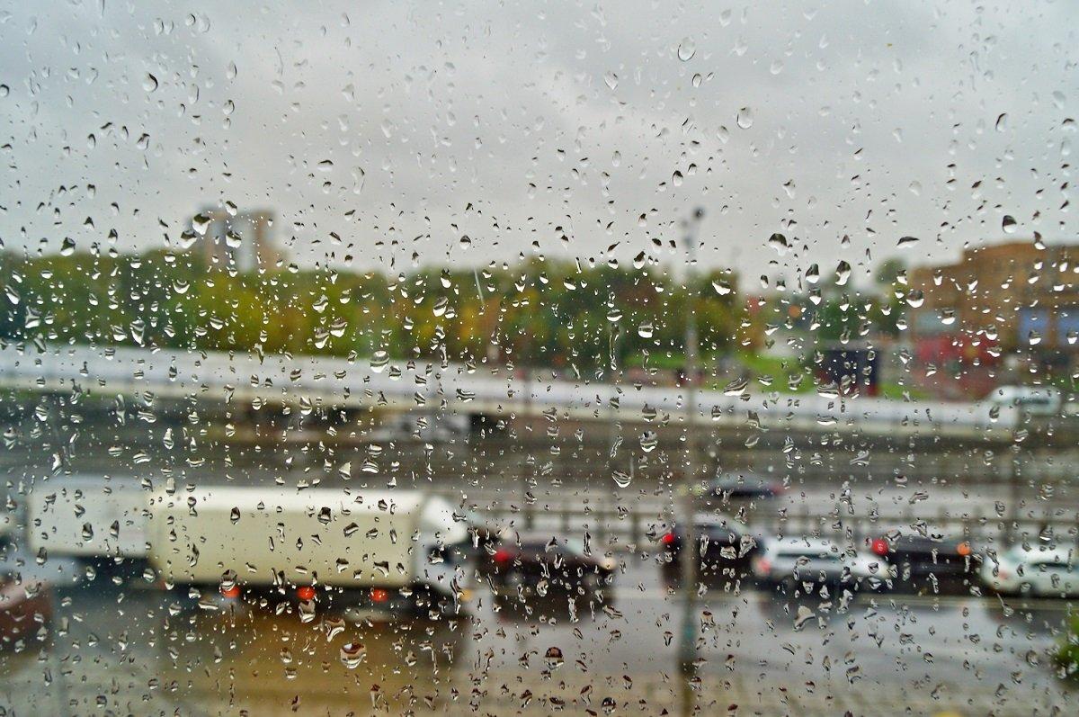 В Украине резко похолодает: дожди накроют семь областей страны - today.ua