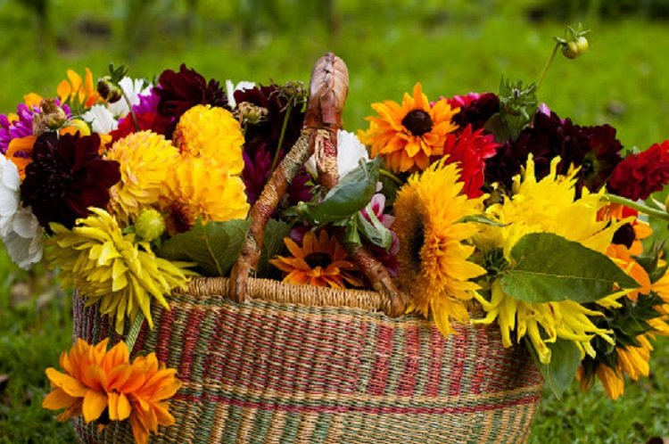 Свято 12 серпня: народні прикмети і традиції в день пам'яті Іоанна Воїна