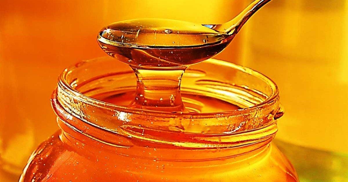 Как выбрать качественный мед на рынке: простой метод, который надо знать каждому - today.ua