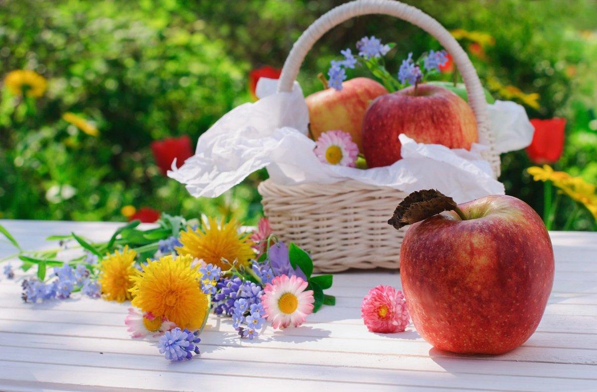 Праздник 19 августа: Яблочный Спас – что обязательно следует сделать в этот день
