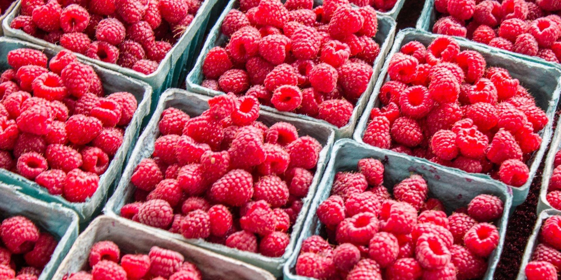 Коли в Україні подешевшає малина: ціни на ягоди зашкалюють в розпал сезону - today.ua