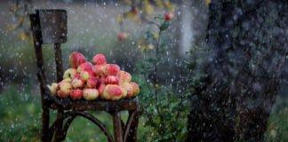 """Літо в Україні закінчиться осінньою погодою: синоптики дали докладний прогноз на кінець серпня"""" - today.ua"""