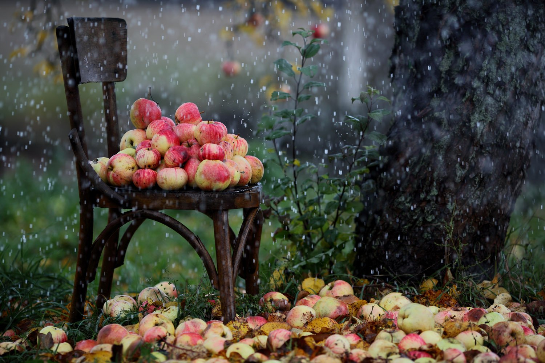 Лето в Украине закончится осенней погодой: синоптики дали подробное прогноз на конец августа - today.ua