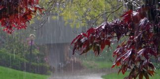 """На Україну насувається сезон холодних дощів: прогноз погоди на середину серпня 2020"""" - today.ua"""