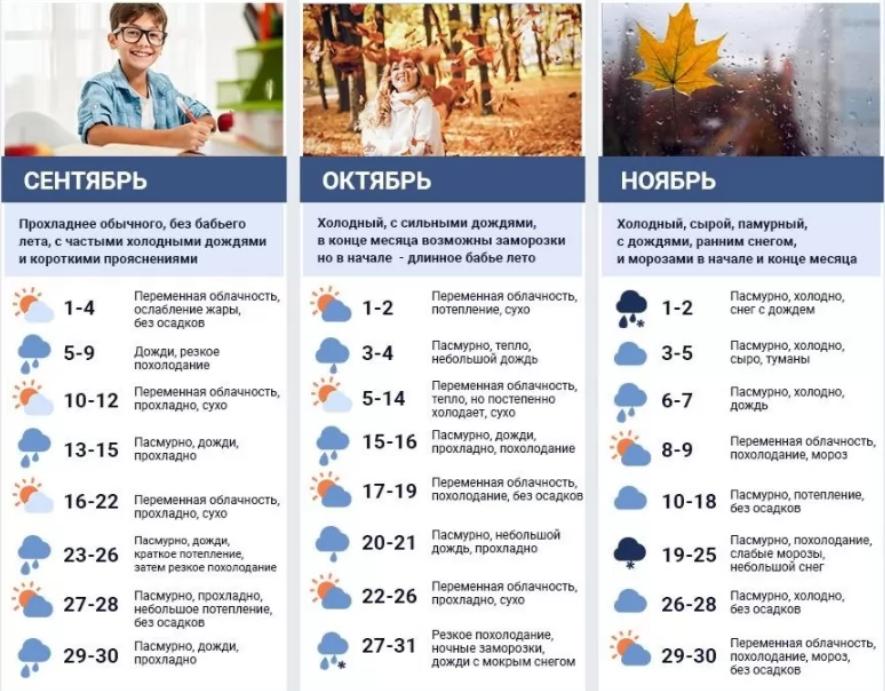 Жара в сентябре и дожди с заморозками в октябре: синоптики рассказали о сюрпризах погоды этой осенью