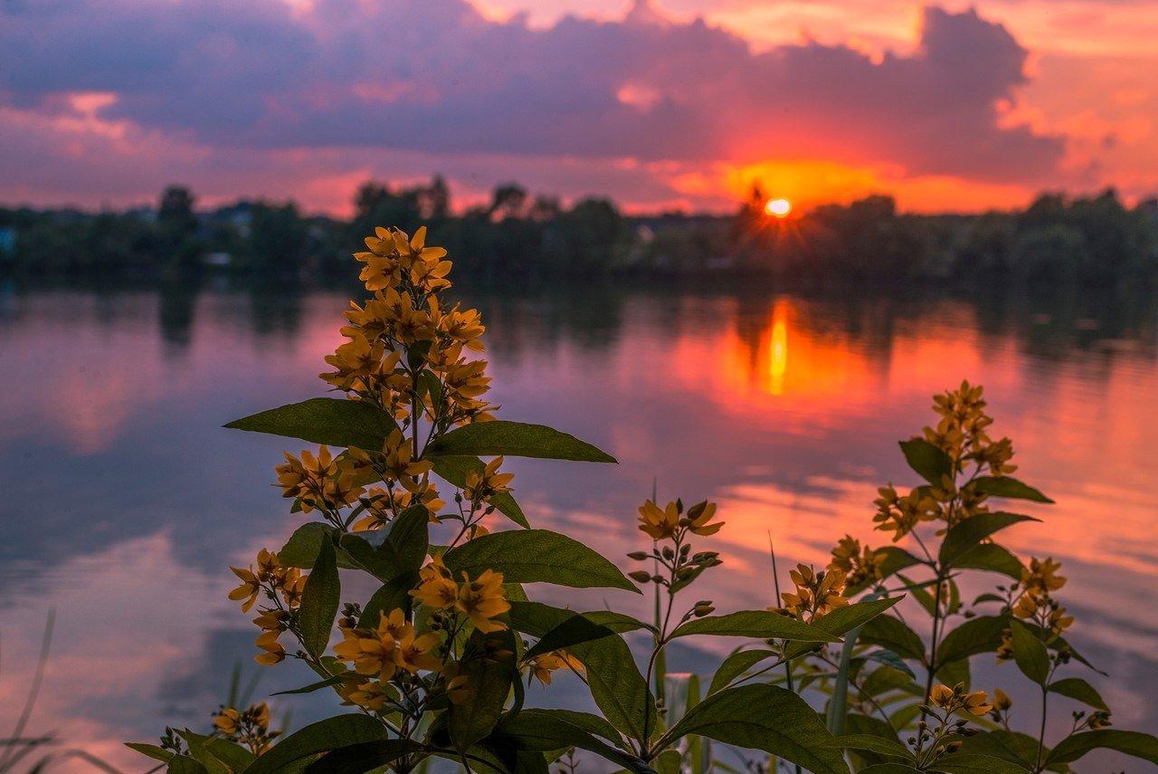 Праздник 5 августа: в Трофимов день нужно встать пораньше, иначе счастья не будет