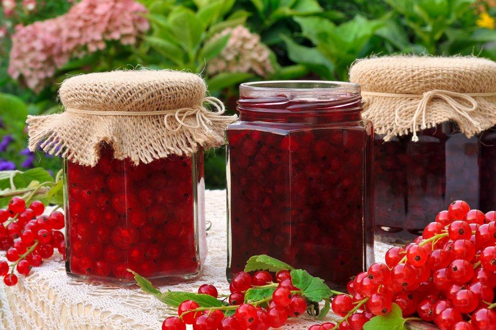 Варенье-желе из красной смородины на зиму: простой рецепт витаминного лакомства