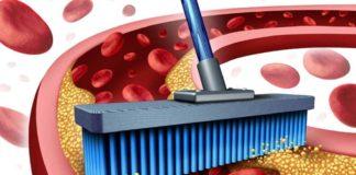 Три продукта, которые помогут избавить сосуды от холестерина: медики рекомендуют - today.ua
