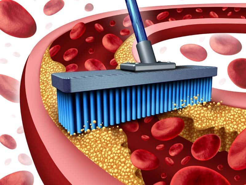 Три продукти, які допоможуть позбавити судини від холестерину: медики рекомендують - today.ua