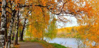 "Спека триватиме до середини вересня: синоптики обрадували оновленим прогнозом погоди"" - today.ua"