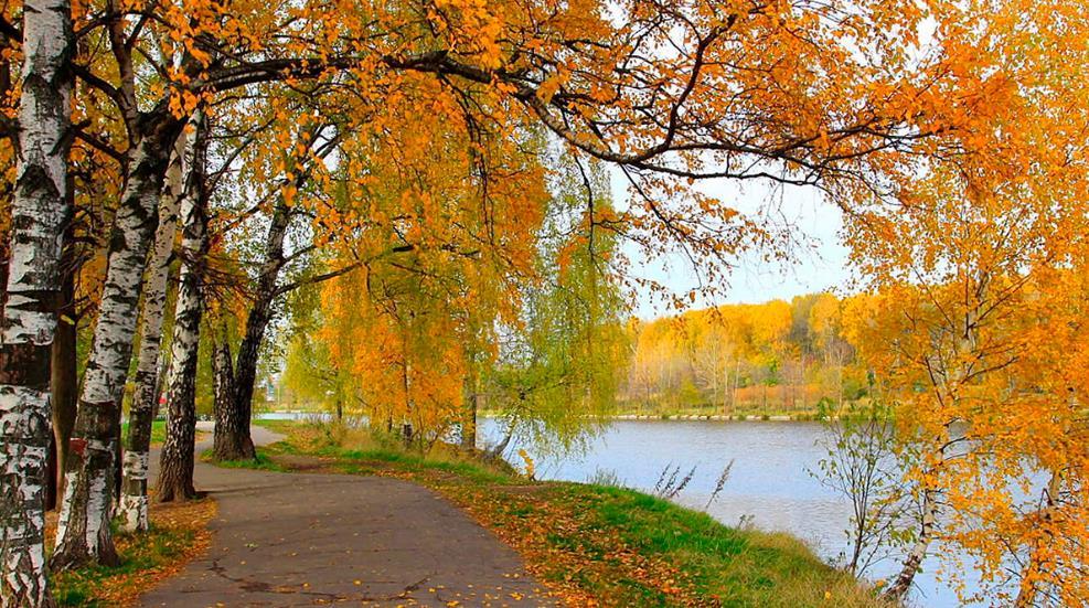 сфинкс сегодня фото в октябре осень чтобы повторюшничать, решил