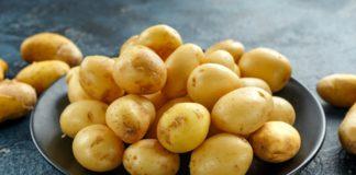 Україна заборонить ввезення російської картоплі: чи допоможе ембарго фермерам - today.ua
